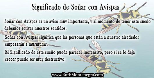 images interpretacion suenos Diccionario Letra a Significado Sonar Avispas Ruth Montenegro - Soñar con Avispas