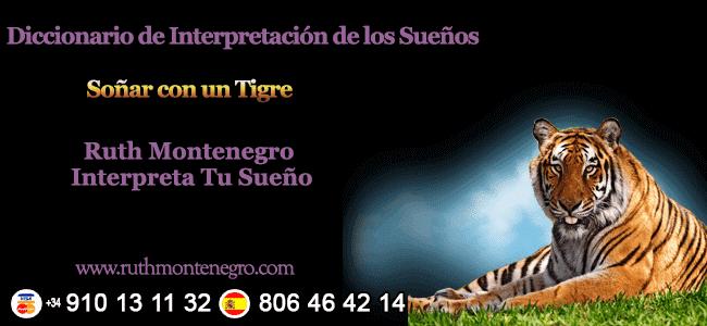 images interpretacion suenos interpretacion suenos Letra T Sonar con un Tigre - Soñar con un Tigre