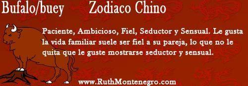 horóscopo chino búfalo o buey