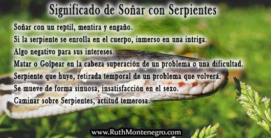 images interpretacion suenos Diccionario Letra S Significado Sonar Serpientes Ruth Montenegro - Soñar con Serpientes