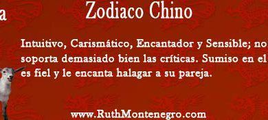 horoscopo chino cabra Ruth Montenegro 390x175 - Horóscopo Géminis Agosto 2020