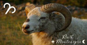 Signo Aries Anual 2020 Ruth Montenegro 300x155 - Horóscopo Anual Aries 2020
