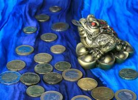 Ritual Prosperidad con Ranas ruth montenegro 270x195 - Ritual para Atraer Dinero