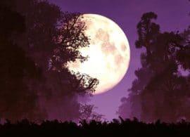 ¿Cómo nos afectará la Super Luna del 8 de Abril de 2020?